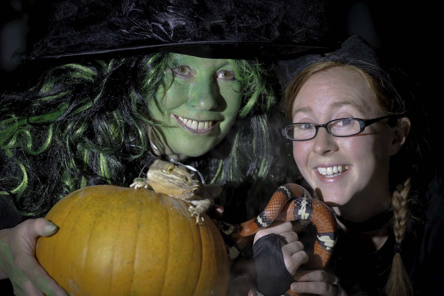 Image for Magic, Mayhem and a Pumpkin Spooktacular at Hatton Adventure World!