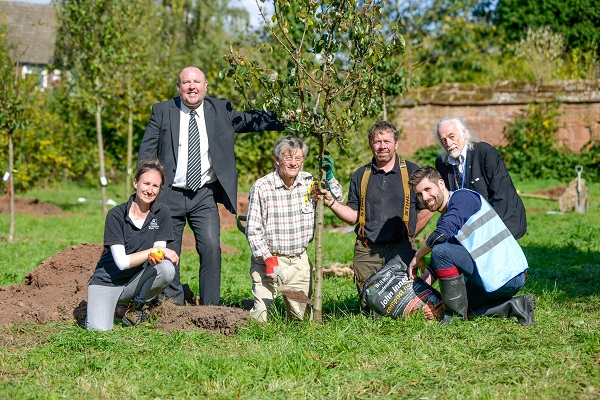Image for Children and volunteers plant new orchard at The Charterhouse