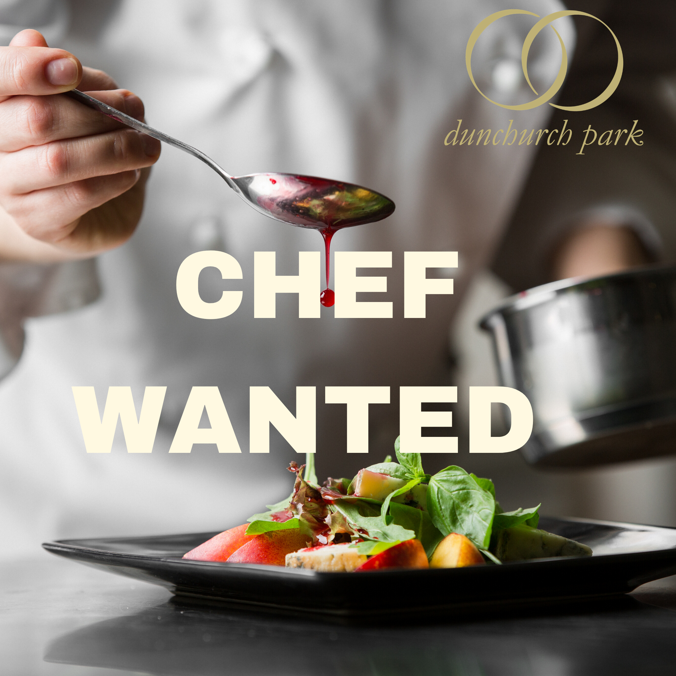 Image for Chef Wanted